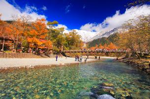新雪と紅葉の穂高連峰と梓川の清流と河童橋の写真素材 [FYI01512088]