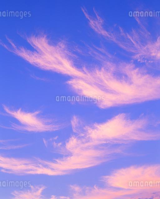 朝焼けの空の写真素材 [FYI01512252]