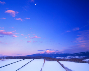 夕日に染まる斜里岳と雪原と月の写真素材 [FYI01512292]