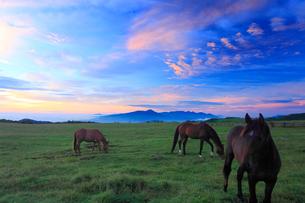 馬と八ケ岳と富士山と蓼科山などの山並みと朝焼けの写真素材 [FYI01512334]