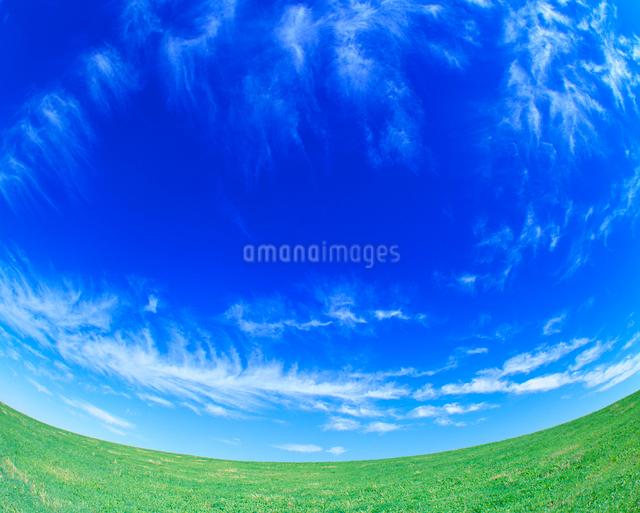 牧草地の丘とすじ雲の写真素材 [FYI01512360]