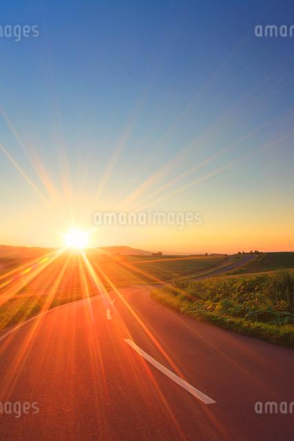 パッチワークの路と夕日の光芒の写真素材 [FYI01512504]
