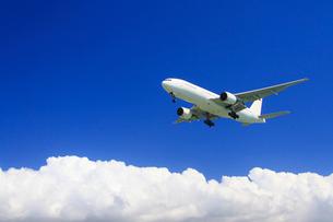 日本航空の航空機と夏の雲の写真素材 [FYI01512572]
