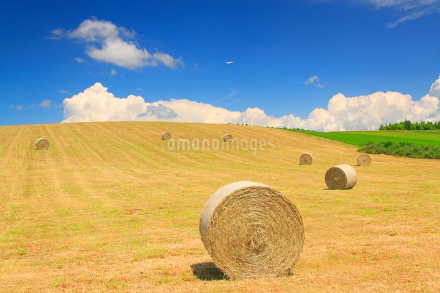 干し草ロールの丘と飛行機の写真素材 [FYI01512732]