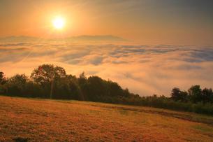 雲海と芝生と朝日と四阿山と浅間山の写真素材 [FYI01512867]