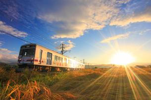 朝日に輝く別所線の電車と田園の写真素材 [FYI01513002]