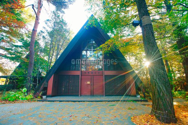 軽井沢高原教会の星野遊学堂と朝の木もれ日の写真素材 [FYI01513370]
