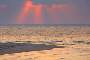 角島大橋から望む釣り人と海と夕日の光芒の写真素材 [FYI01513558]