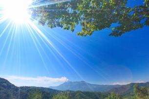 噴火する御嶽山と木もれ日の写真素材 [FYI01514106]