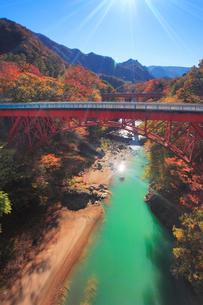 紅葉の吾妻渓谷と千歳新橋,上流方向を望むの写真素材 [FYI01514188]