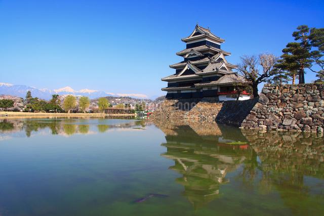 松本城と本丸堀の写真素材 [FYI01514226]