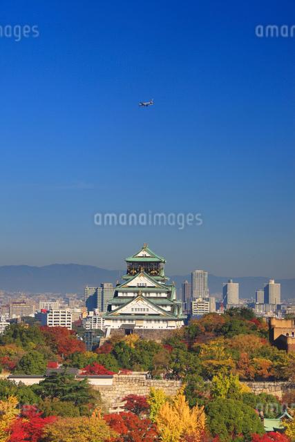 紅葉の大阪城と飛行機の写真素材 [FYI01514329]