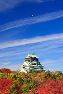サクラなどの紅葉の大阪城と飛行機と秋空の写真素材 [FYI01514333]