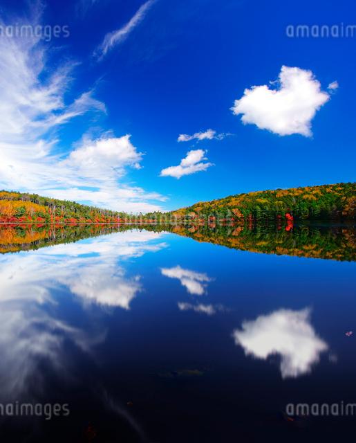 紅葉の水鏡の白駒池とハート型の雲の写真素材 [FYI01514353]