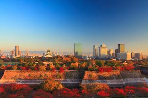 朝の紅葉の大阪城と大阪ビジネスパークのビル群の写真素材 [FYI01514379]