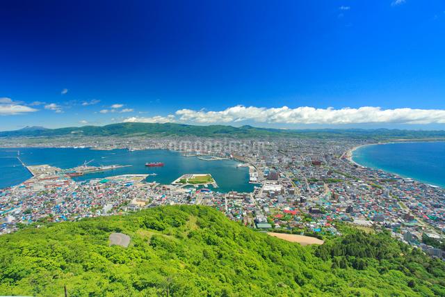 函館山から望む函館市街の写真素材 [FYI01514410]