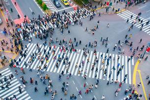 渋谷駅前スクランブル交差点を行き交う通行人の写真素材 [FYI01514424]
