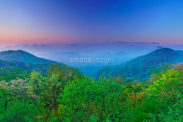 朝の旧碓氷峠から望む妙義山などの山並みと新緑の樹林の写真素材 [FYI01514496]