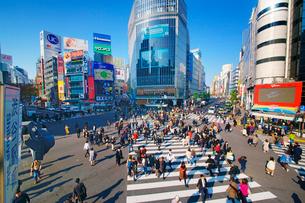 渋谷駅前スクランブル交差点を行き交う通行人の写真素材 [FYI01514516]
