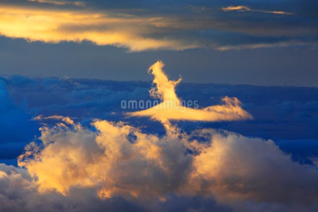 朝の鉢盛山方向の雲海と輝く雲の写真素材 [FYI01514606]