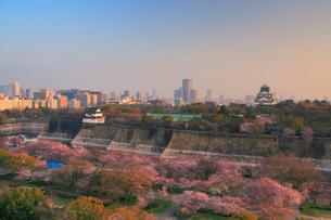 朝の桜咲く大阪城とビル群の写真素材 [FYI01514634]