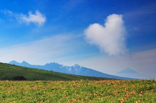 ニッコウキスゲと富士山と八ケ岳とハート型の雲の写真素材 [FYI01514670]