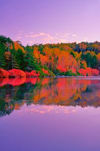 朝の紅葉の水鏡の白駒池の写真素材 [FYI01514672]