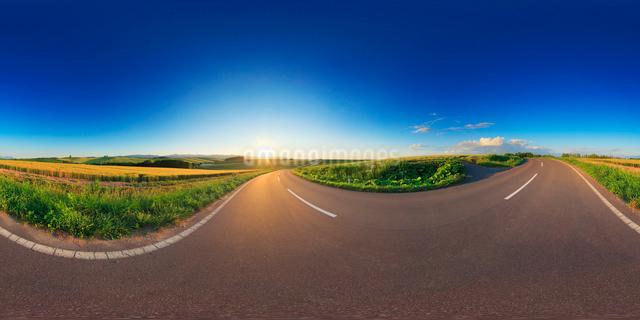 パッチワークの路と小麦畑と夕日のVRパノラマの写真素材 [FYI01514739]