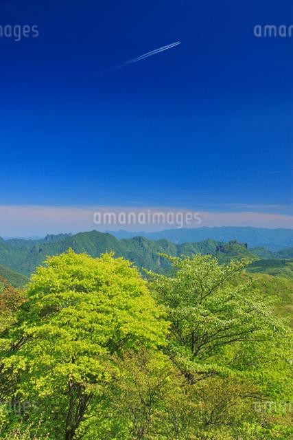 矢ヶ崎山から望む奥秩父山塊方向の山並みと新緑の樹林と飛行機雲の写真素材 [FYI01514791]