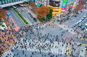 渋谷駅前スクランブル交差点を行き交う通行人の写真素材 [FYI01514860]