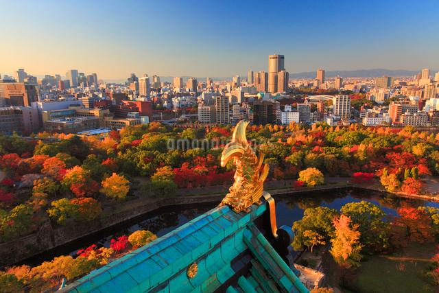 大阪城天守閣から望む北西方向のビル群の夕景と鯱の写真素材 [FYI01514942]