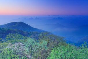 朝の旧碓氷峠から望む妙義山方向の山並みと新緑の樹林の写真素材 [FYI01515013]