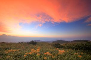 アキノキリンソウと北西方向の山並みと夕焼けの写真素材 [FYI01515042]
