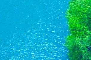 新緑と輝くもみじ湖の水面の写真素材 [FYI01515064]