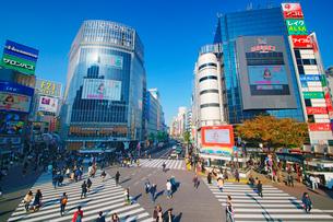 渋谷駅前スクランブル交差点を行き交う通行人の写真素材 [FYI01515257]