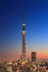 夜明けの東京スカイツリーの写真素材 [FYI01515413]