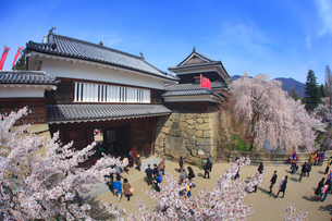 桜と上田城と観光客の写真素材 [FYI01515437]