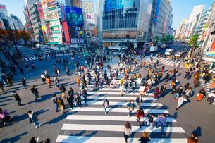 渋谷駅前スクランブル交差点を行き交う通行人の写真素材 [FYI01515480]