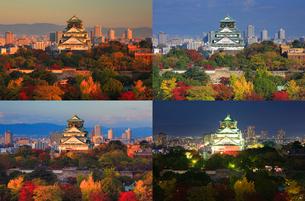 紅葉の大阪城の一日,朝昼夕夜の写真素材 [FYI01515699]