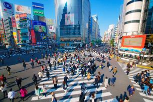 渋谷駅前スクランブル交差点を行き交う通行人の写真素材 [FYI01515835]