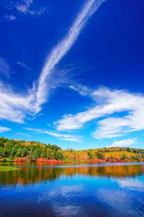 紅葉の水鏡の白駒池とすじ雲の写真素材 [FYI01515847]