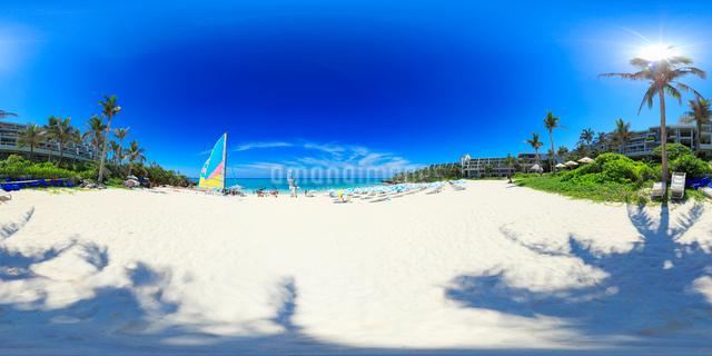 ムーンビーチと北方向を中心とした海と椰子の木陰の写真素材 [FYI01515870]
