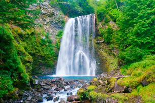 善五郎の滝の写真素材 [FYI01515881]