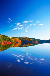 朝の紅葉の水鏡の白駒池の写真素材 [FYI01515975]