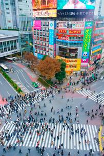 渋谷駅前スクランブル交差点を行き交う通行人の写真素材 [FYI01516136]