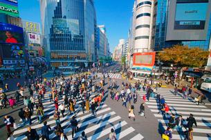 渋谷駅前スクランブル交差点を行き交う通行人の写真素材 [FYI01516157]