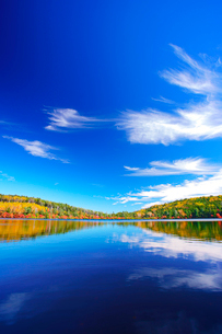 紅葉の水鏡の白駒池とすじ雲の写真素材 [FYI01516175]
