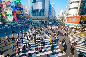 渋谷駅前スクランブル交差点を行き交う通行人の写真素材 [FYI01516180]