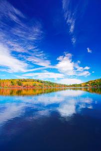 紅葉の水鏡の白駒池と秋空の写真素材 [FYI01516336]