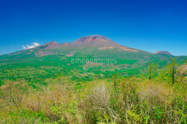 離山から望む新緑の浅間山の写真素材 [FYI01516385]